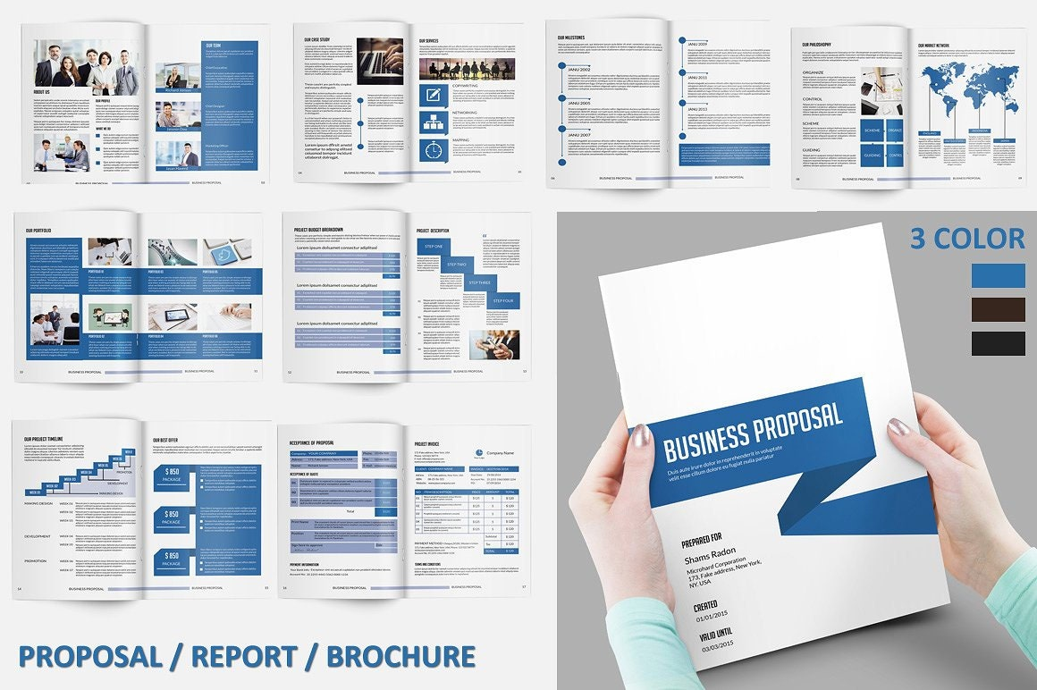 Business Proposal Template Project Proposal 3 Color Etsy