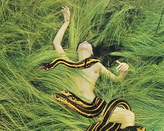 Collage Art, Surreal Art, Archival Print, Home Decor - Indulgence