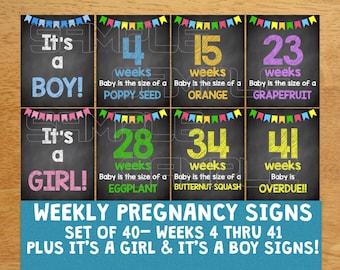Weekly Pregnancy Chalkboard Signs Weeks 4-41, Maternity Signs, Maternity Photos, Maternity