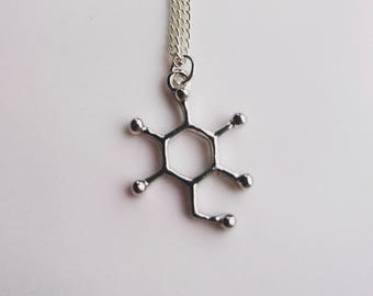Glucose Molecule Necklace Silver Tone, Molecular Structure Necklace, Science Gift, Chemistry Themed Gift, Biology Gift, Glucose Themed Gift