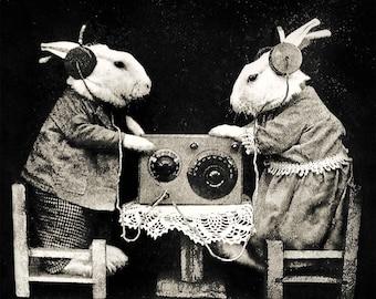 Rabbit bunny print wall decor vintage photo old antique radio headphones gift lover owner anthropomorphic art cool poster unusual unique