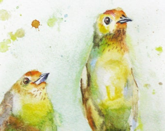 Baby Finches Watercolor