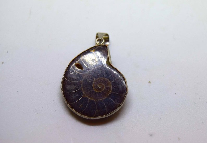 Devonian Ammonite Fossil in a wrapped bezel. image 0