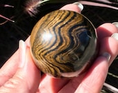Powerful Stromatolite! St...