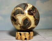 Large Lovely Utah Septarian Sphere! Septarian Dragon Stone Sphere! Healing Stones, USA Collector Stone