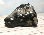 Large Lovely Snowflake Obsidian! 276g Rough Stone! Large Snowflake patterns! USA Collector Stone
