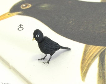 Single Bird Blackbird Male - 1/12th dollshouse miniature bird