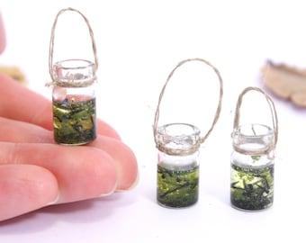 Jar of tadpoles  - 1/12th dollshouse miniature