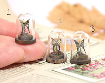 Butterflies Under Tiny Glass Dome - 1/12th dollhouse miniature study