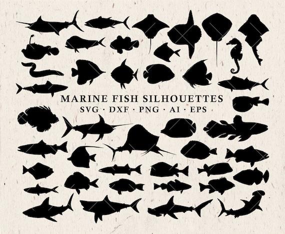 Download Marine Svg Fish Svg Silhouettes Fishing Svg Sea Animals Etsy