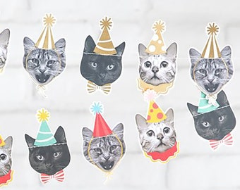 Cats Faces With Party Hats Banner