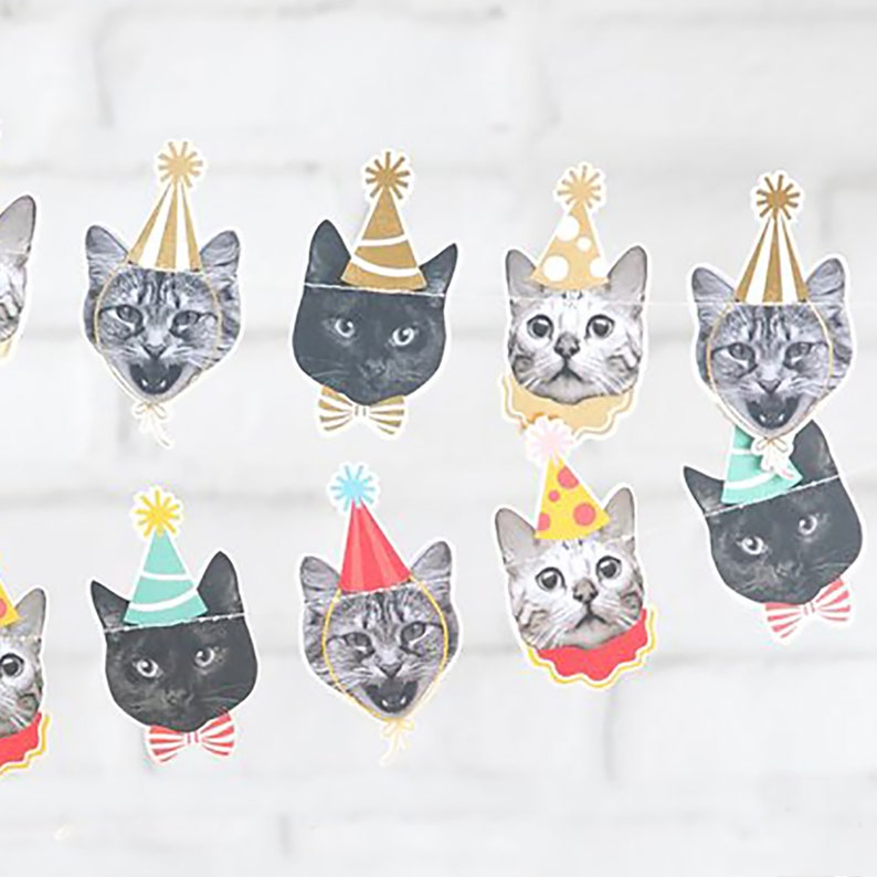 Cats Faces With Party Hats Banner Cat Birthday