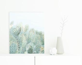 Cactus Photography, Desert Photography, Cacti, Abstract Desert Art, Cactus Art, Aluminum Wall Hanging