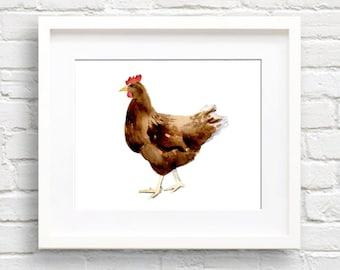 Chicken Art Print - Kitchen Art - Wall Decor - Watercolor Painting