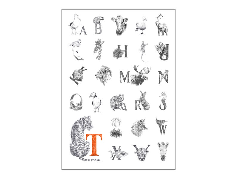 A2 Animal Alphabet Print