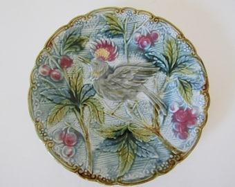 Antique Majolica Bird of Paradise & Cherries Plate - 1800's