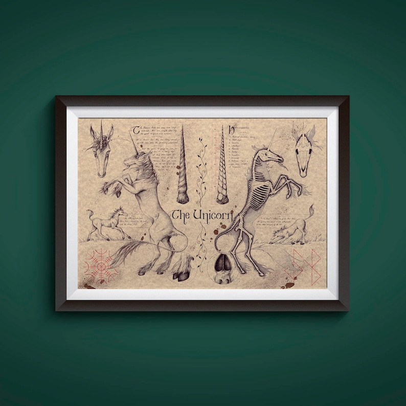 Large  Unicorn  European Folklore Art Print image 1