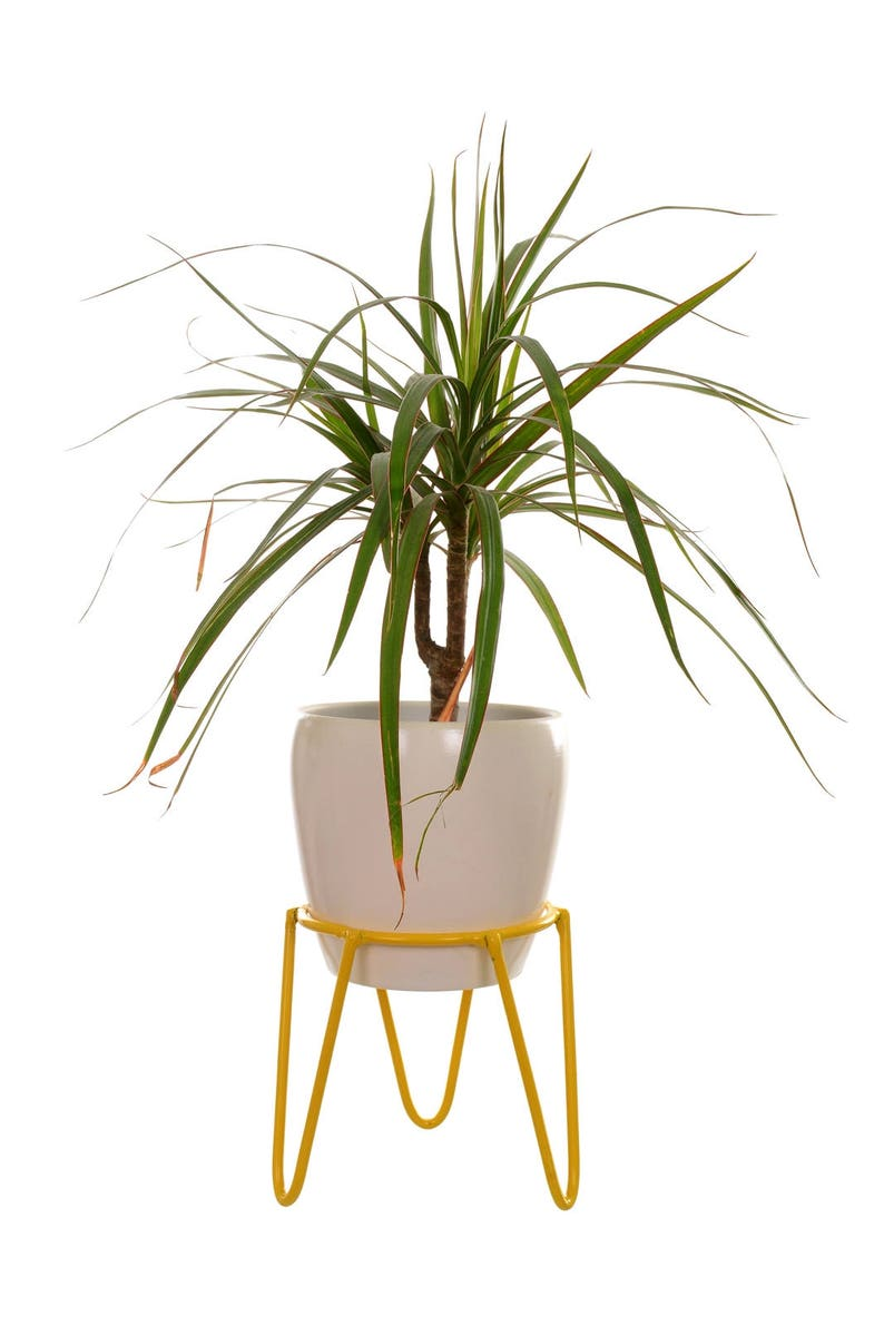 Size S Mid Century Hairpin Legs Wire Plant Stand Plant Stand