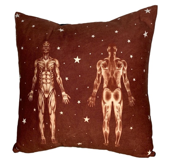 Anatomy Pillow. Massage office decor. Gift for doctor, massage therapist, or physical therapist.