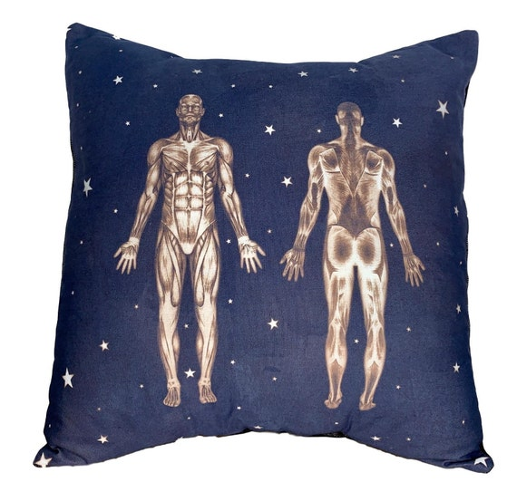 Anatomy Pillow. Gift for massage therapist.