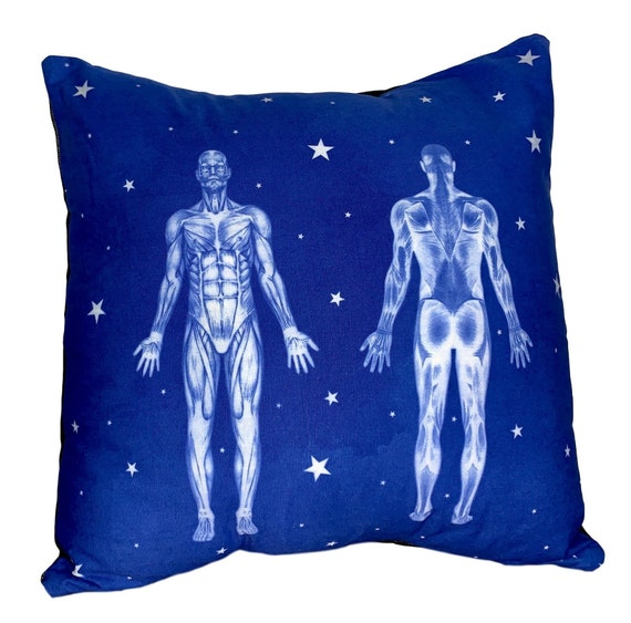 Anatomy Pillow. Medical office decor. Gift for massage therapist, doctor, physical therapist.