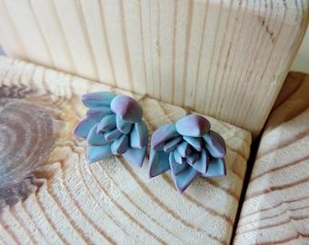 Mint succulent earrings, Polymer clay earrings, Cactus earrings, Succulent jewelry, Polymer clay jewelry, Plant earrings post,