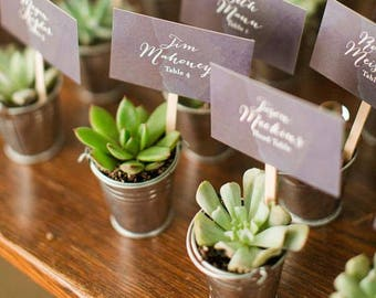 Succulent Favors ,  Succulent Planters | Mini galvanized buckets |  Wedding Favor, BUCKETS ONLY