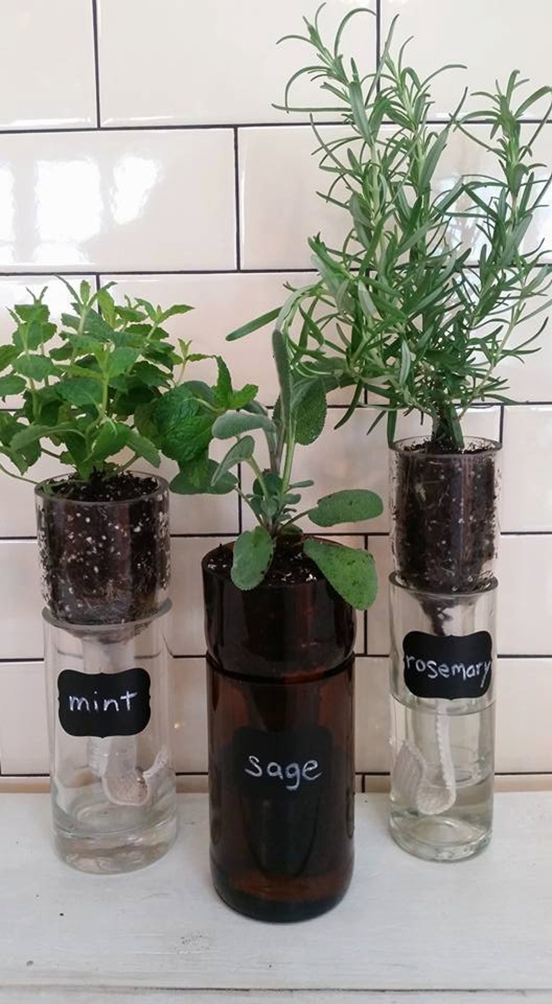 Self Watering Recycled Wine Bottle Planter Herb Planter Etsy