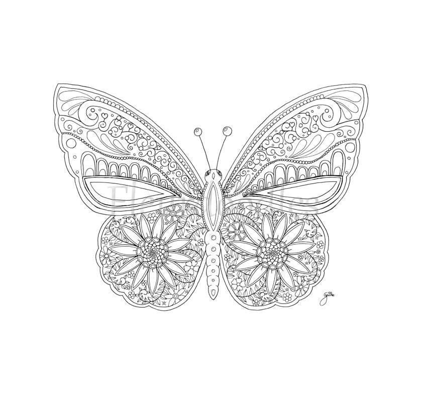 Schmetterling Malseite für Erwachsene Malseiten | Etsy