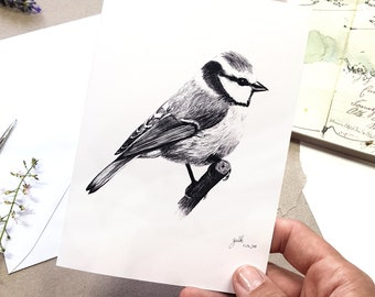 Chickadee Drawing - handmade Greeting Card and Postcard with Fine Art Print Tit Bird