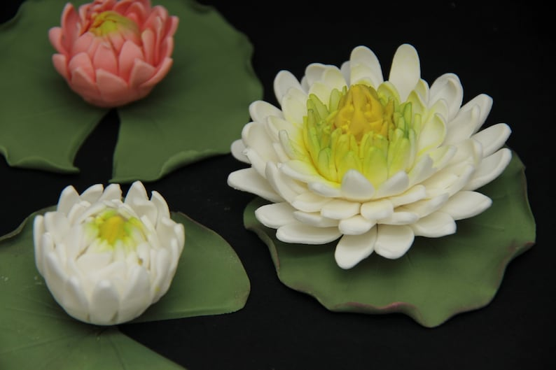 Water Lily Flowers Edible Custom Made Gumpaste Flowers Etsy