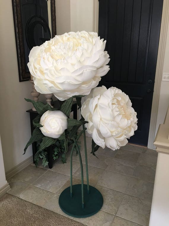 Giant paper three stemmed peonies