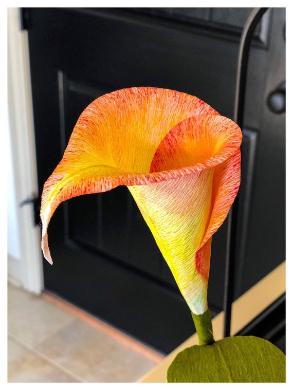 Paper flower Calla Lily