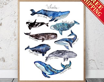 Watercolor Whales Print / Whale, Whale Poster Whale Wall Decor Orca Whale Art Beach Nautical Nursery Boys Kids Room Ocean Print Whale Decor