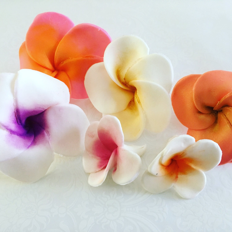 6 large fondant flower hawaiian plumeria fondant plumeria etsy 50 izmirmasajfo