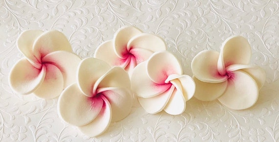6 Grandes Fondant Fleur Hawaienne Plumeria Plumeria Gumpaste Etsy