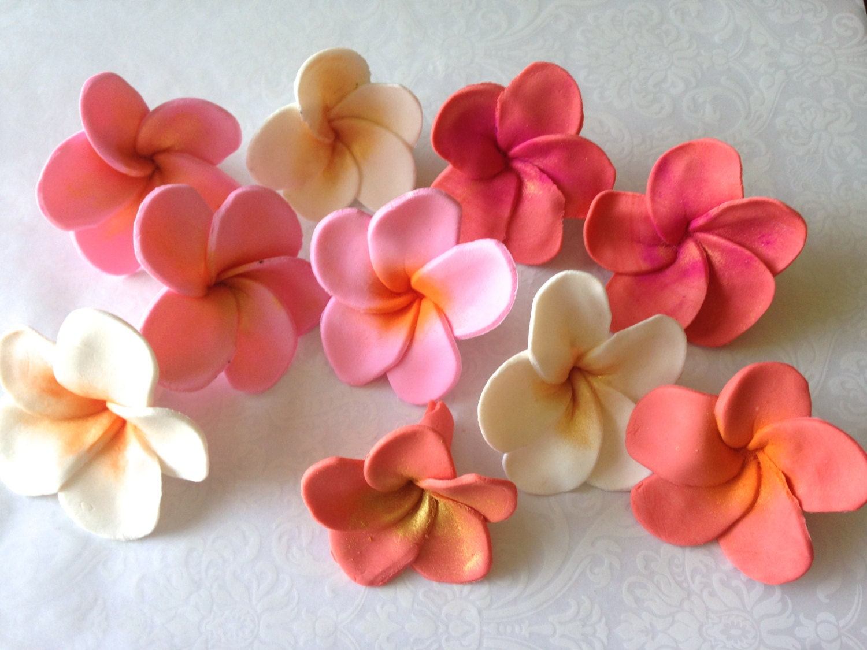 12 Fondant Flower Hawaiian Plumeria Fondant Plumeria Gumpaste Etsy