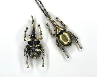 Curiosity Atlas Beetle Brass Pendant