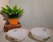Set of 2 Arcopal Fruits de France Scales 20cm .