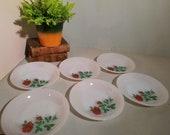 Set of 6 Arcopal Rose Deep Plates soup plates. 21 cm