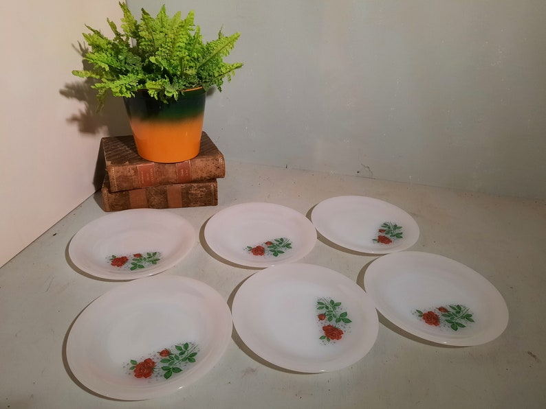 Set of 6 Arcopal Rose Breakfast Plates 19 cm image 0