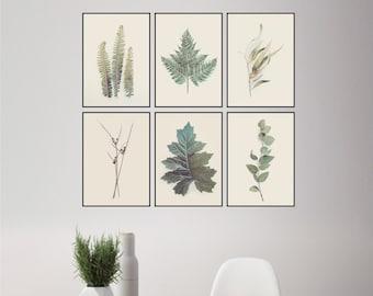 Printable Art, Set of Botanical Prints, Print Set Botanical, Set of 6 Prints, Leaves, Ferns, Small Prints, Botanical, Art Prints, Wall Art