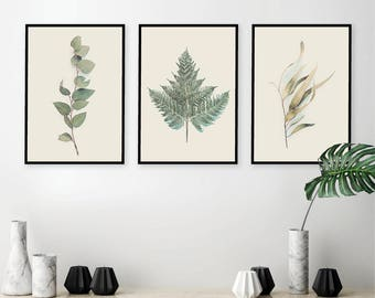 Digital Downloads, Botanical poster printable, Botanical print set, Botanical prints, Set of 3 prints, Australian botanical prints, Posters