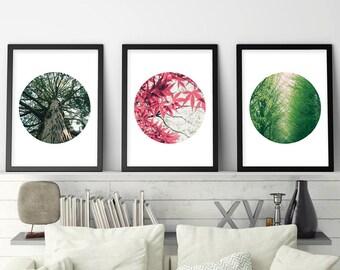 Botanical Prints, Botanical Print Set, Set of 3 Prints, Botanical, Print Set, Downloadable, Poster, Tree Print, Printable, Digital, Wall Art