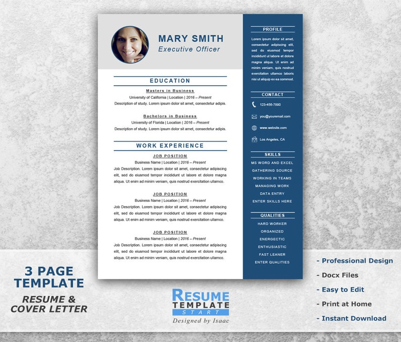 Executive Resume Template Word Professional
