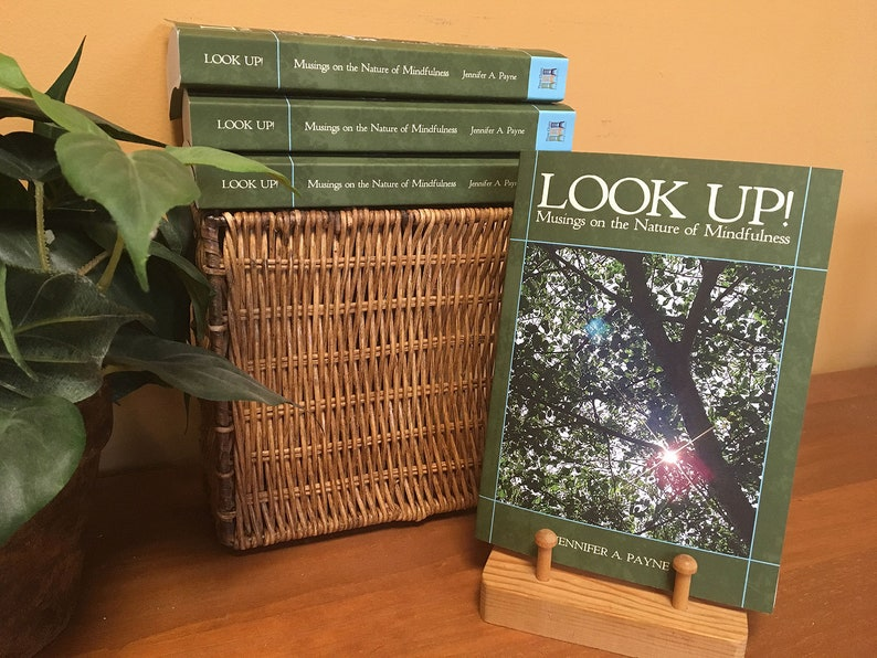 BOOK: LOOK UP Musings on the Nature of Mindfulness image 0