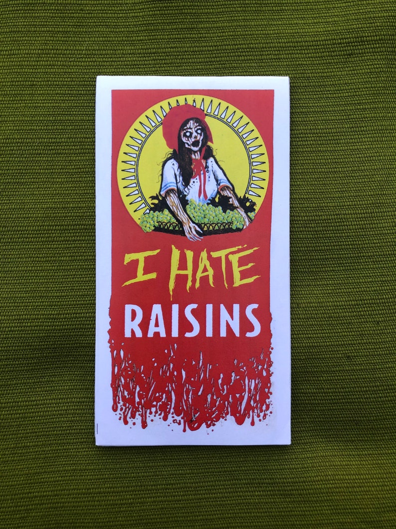 I HATE RAISINS  original humor zine with weird drawings and image 0