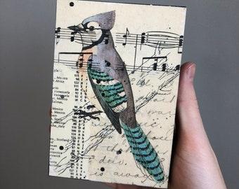Blue Jay Artwork, Blue Jay Mixed Media Collage, Bird Collage Art