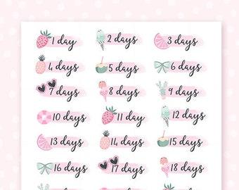 Summer countdown stickers - 31 planner stickers