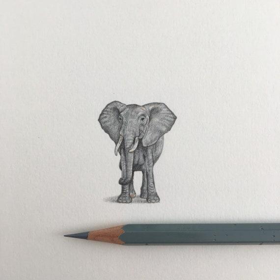 African Elephant Original Framed Drawing | Etsy
